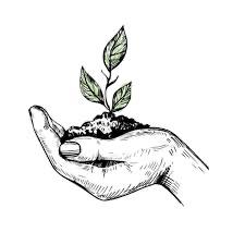 Commandez vos graines et embellissez vos jardins!